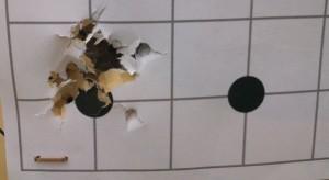 """Crosman Wadcutter """"genérica"""" - 20 tiros, 10 metros"""